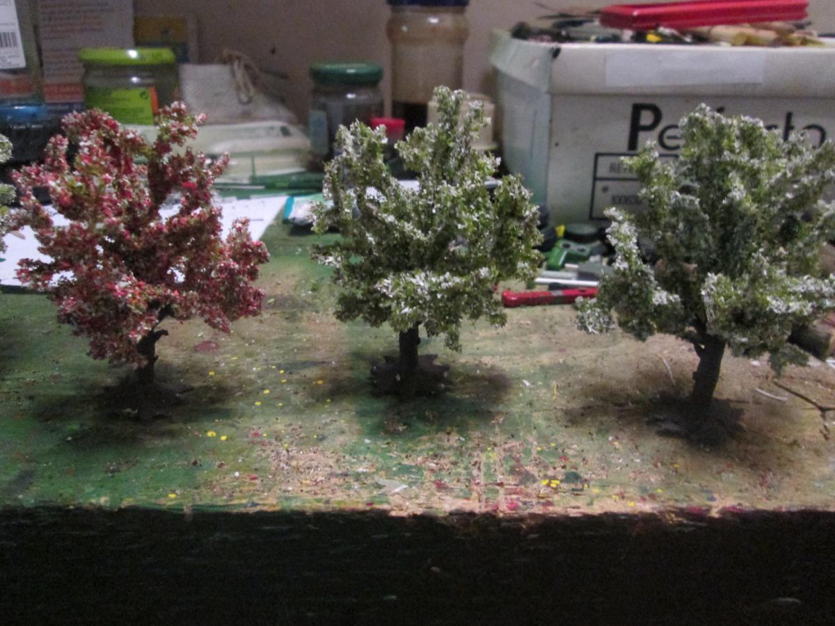 lot de 6 arbres fruitiers en fleurs heki arbres v g tation occasion. Black Bedroom Furniture Sets. Home Design Ideas